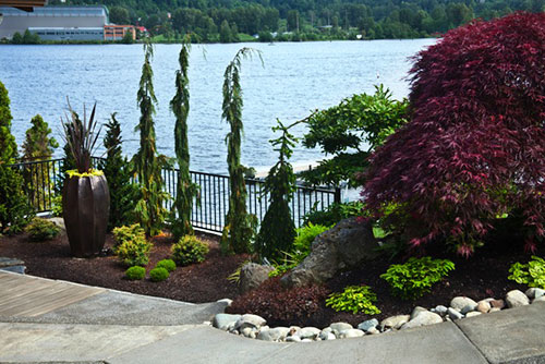 Landscape Design Gig Harbor